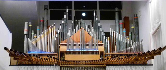 The Main Organ reduced